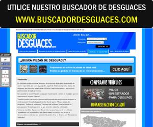 buscadordesguaces-300x250